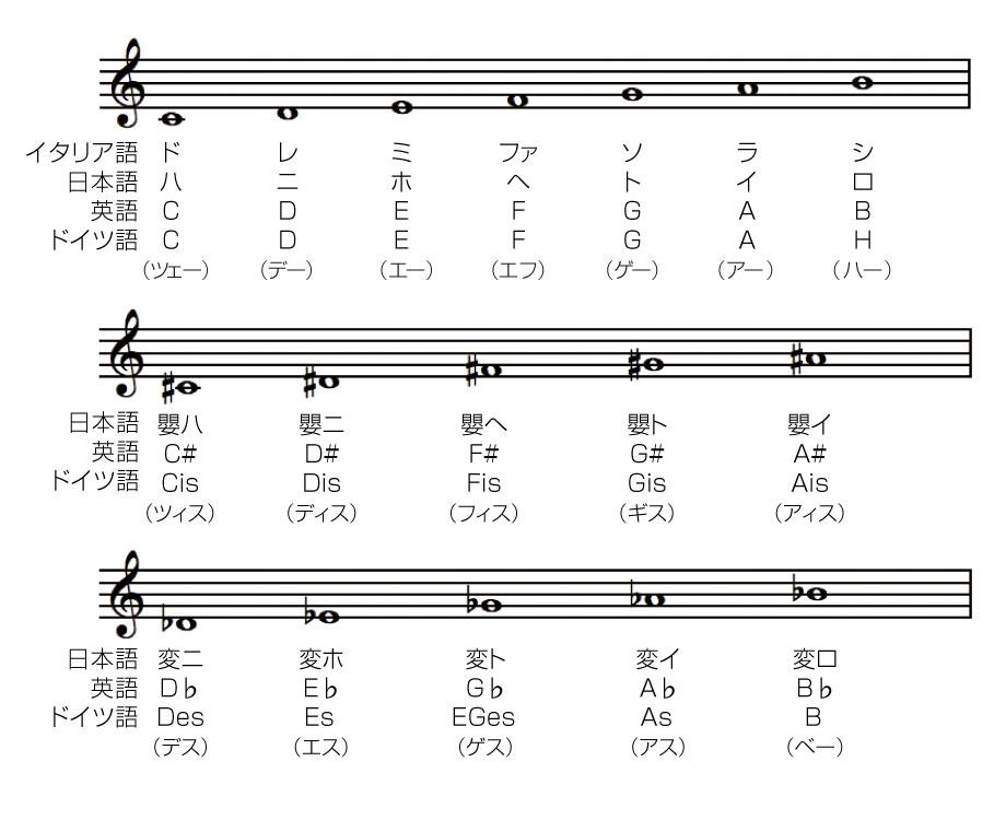 音楽の仕組み【コラム】音楽の仕組み #8:「音名について」/加度 克紘